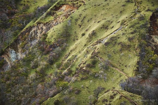 丹沢山の登山道