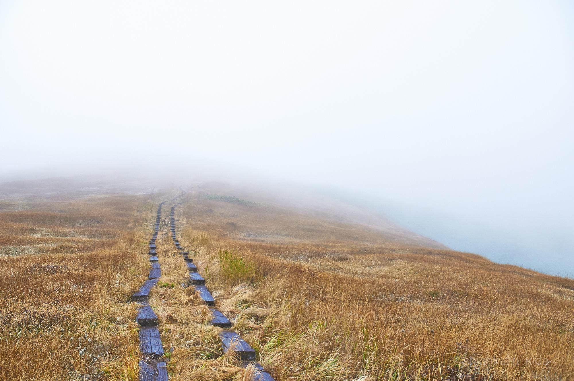 会津駒ヶ岳の靄の中の登山道