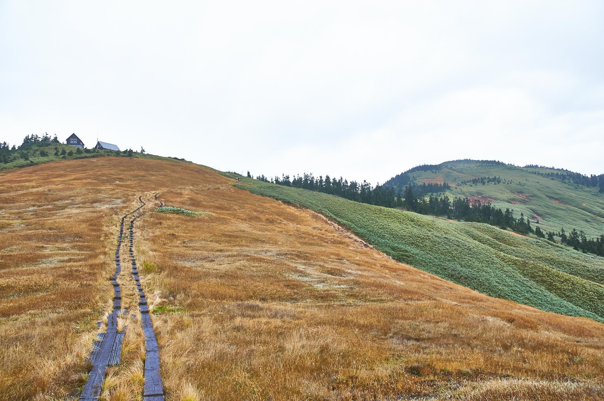 会津駒ヶ岳の登山道と駒の小屋