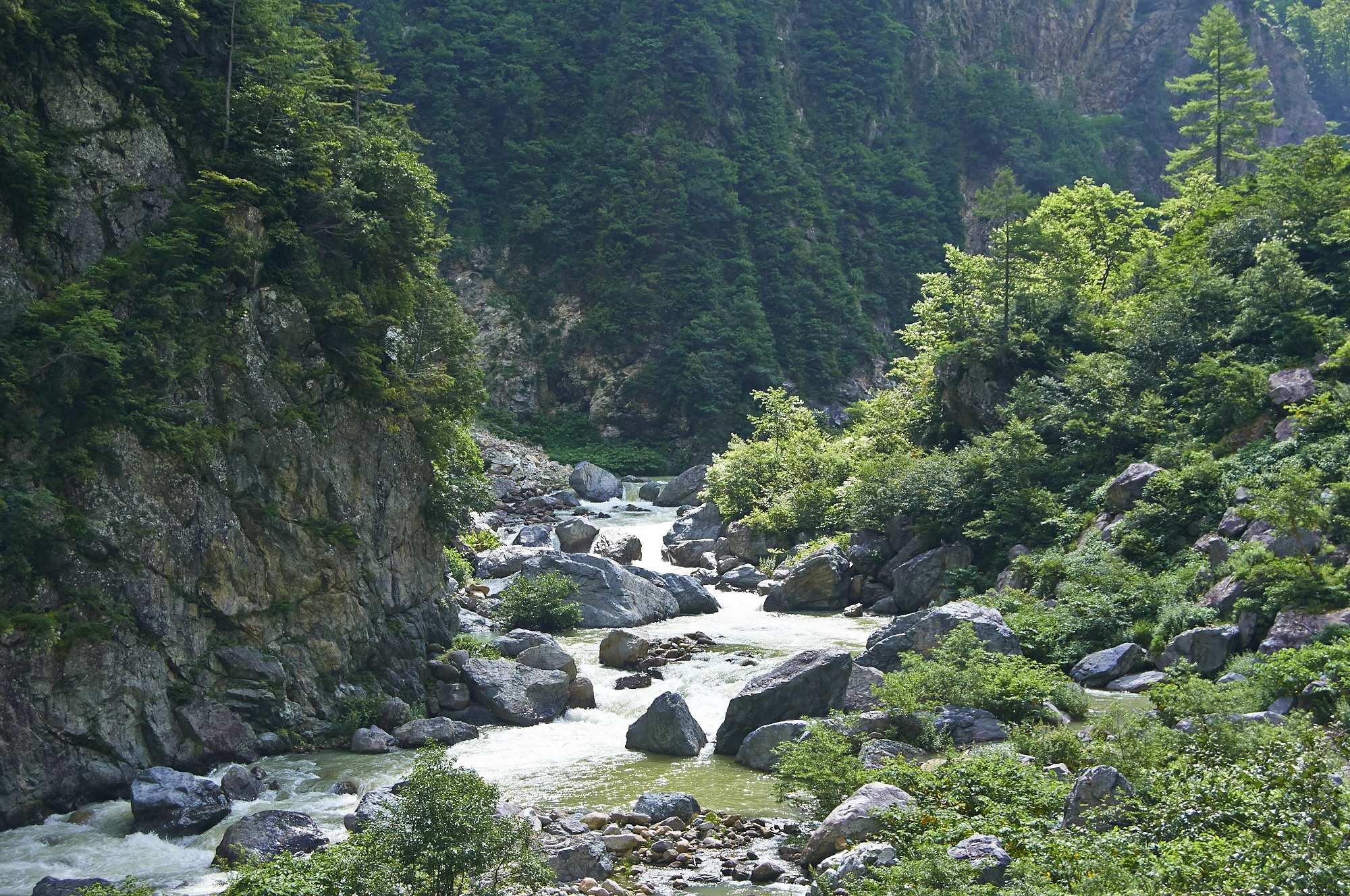 北アルプスの立山の黒部川の内蔵助谷