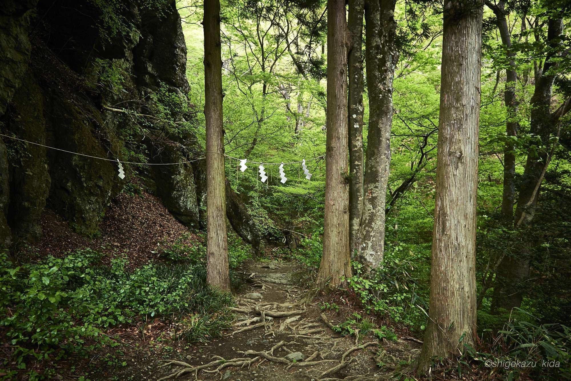 妙義山の中之岳神社の紙垂