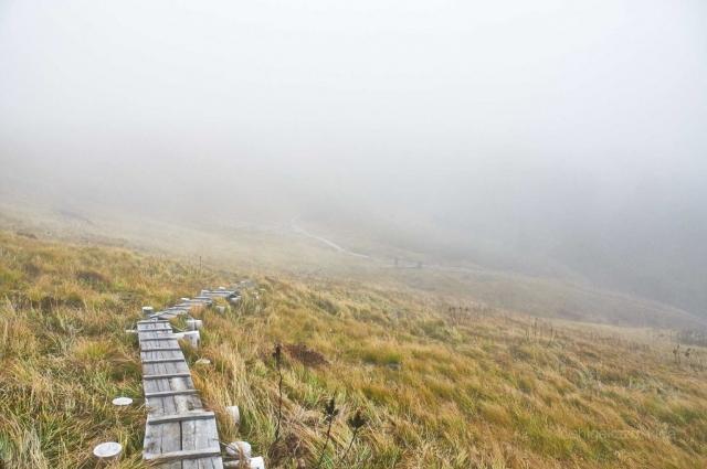 靄の平ヶ岳山頂のカヤトと登山道