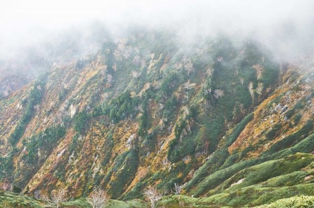 平ヶ岳の登山道から見る山肌
