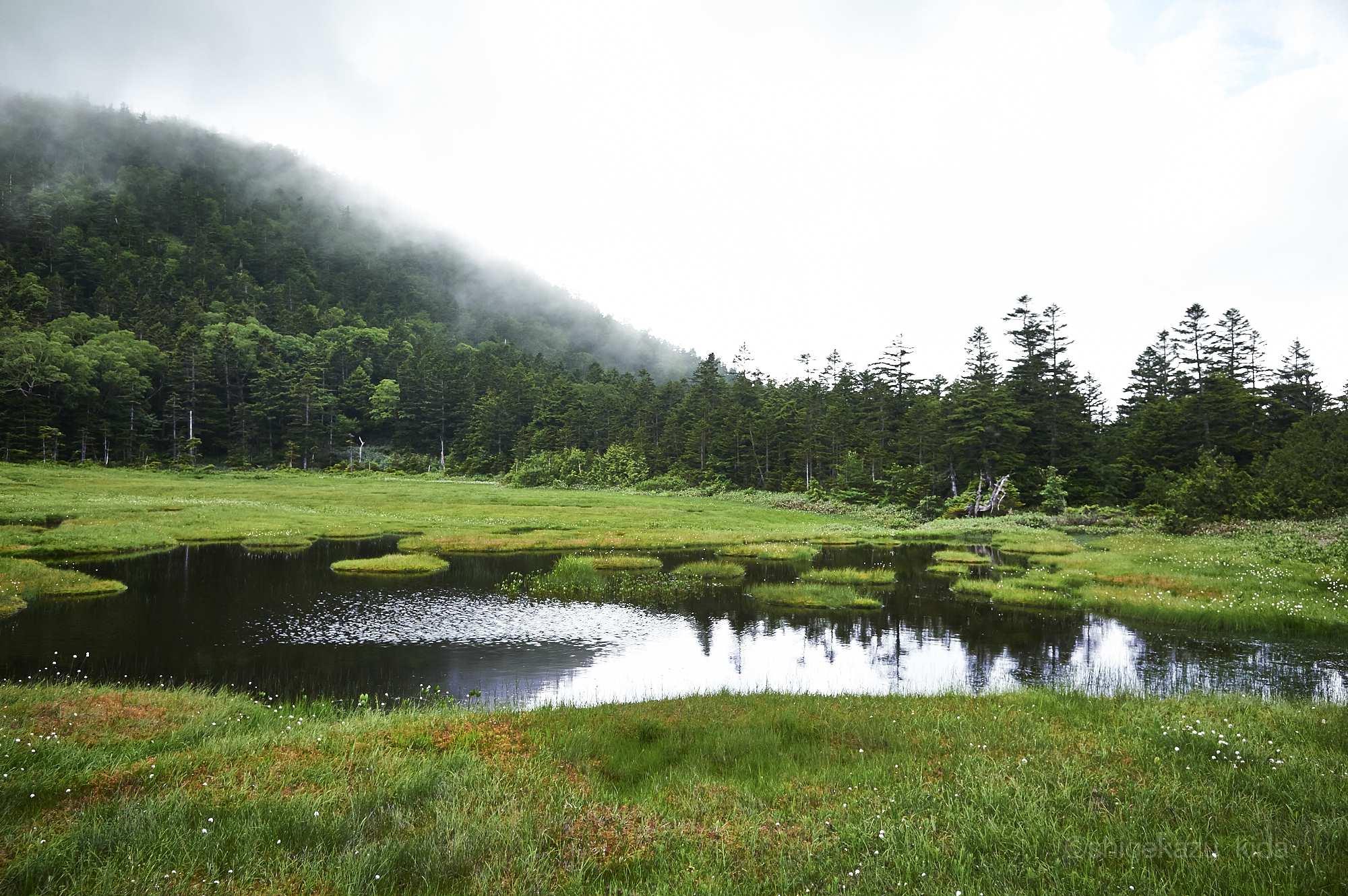 志賀山の四十八池
