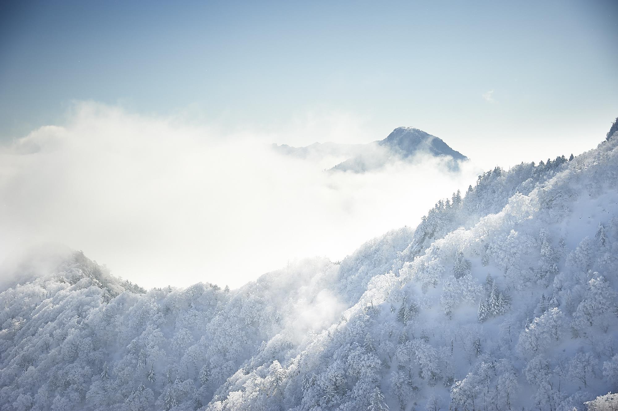 冬の雪山の石鎚山の霧氷と雲