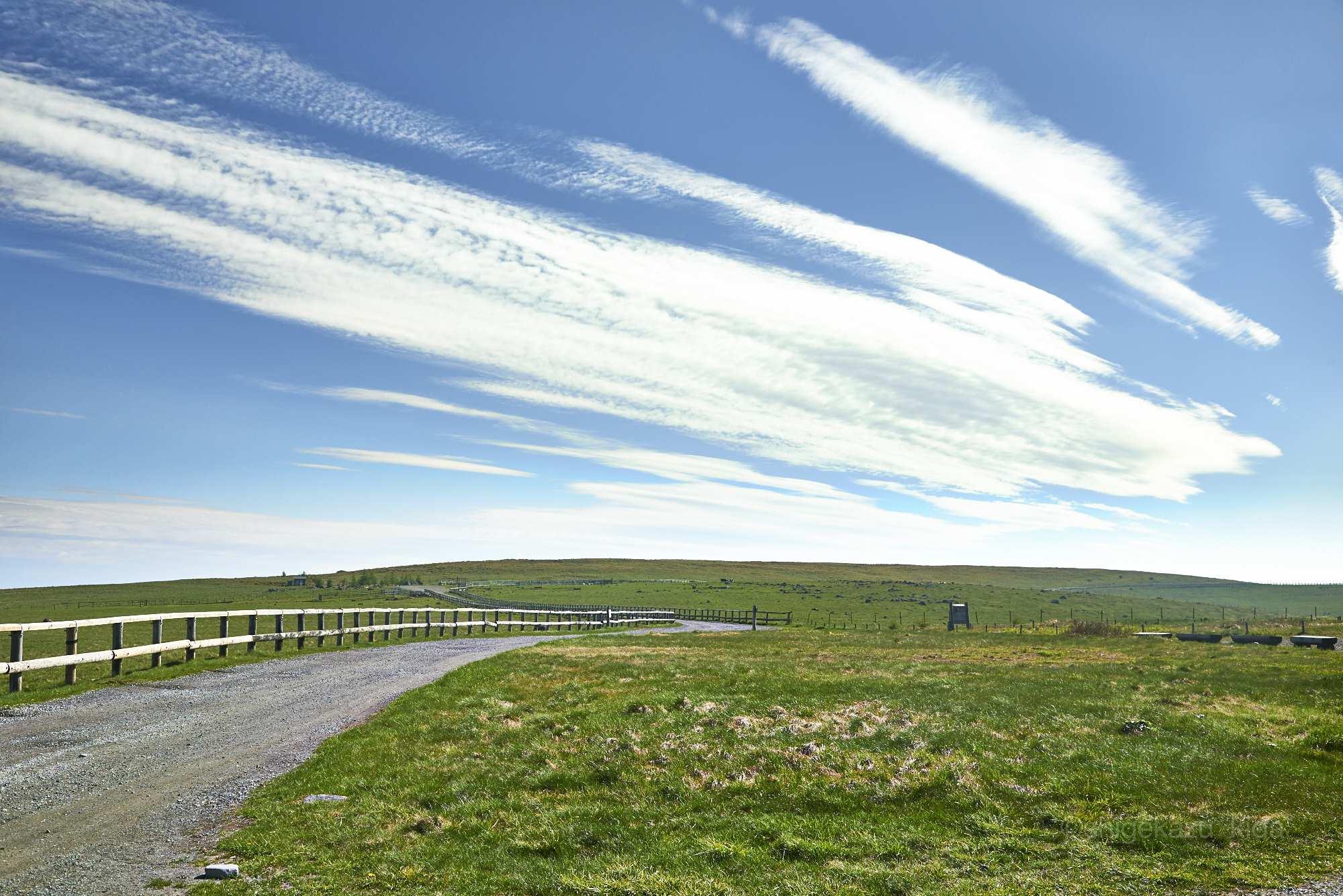 美ヶ原と牧場の風景