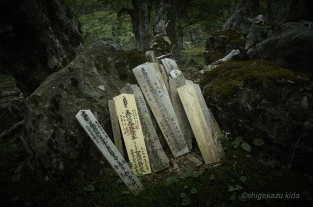 貴田茂和 shigekazu kida 熊野古道の八経ヶ岳